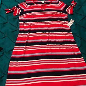 Dress Barn Dresses - Woman's dress